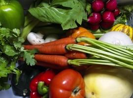 Changement des habitudes alimentaires : quel impact sur la santé  ?