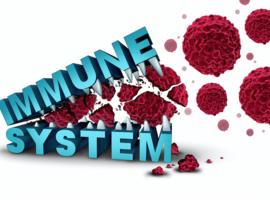Des chercheurs décryptent une interaction entre cellules immunitaires et cancéreuses
