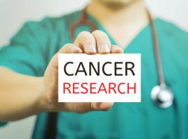 Cancer du sein: des chercheurs de l'Institut Jules Bordet récompensés pour leur travail