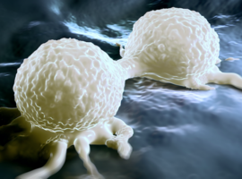 Des chercheurs belges découvrent pourquoi un médicament anti-alcool est aussi anti-cancer