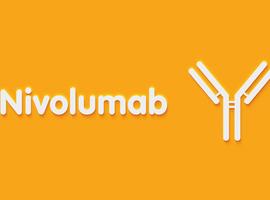 CheckMate 204: première étude de phase II associant nivolumab et ipilimumab