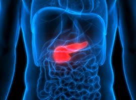 Onderzoek naar pancreaskanker aan VUB verschijnt in Nature Communications