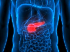 Complexe pancreas- en slokdarmchirurgie enkel nog uitgevoerd in referentiecentra