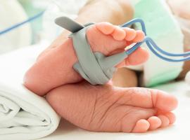 Les enfants early term (37-38 semaines): une population à risque?