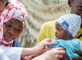 Geen fraude met Vlaamse donaties aan Rode Kruis tijdens ebolacrisis