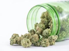 Une réforme de la politique globale en matière de drogues est «nécessaire et urgente»