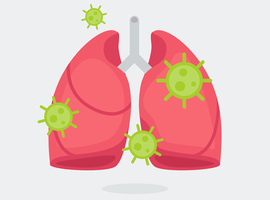 Etude belge sur la réponse immunitaire dans les poumons des patients gravement malades