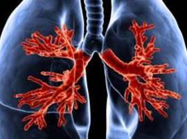 Près de d'1,4 million d'euros pour la recherche belge sur la mucoviscidose