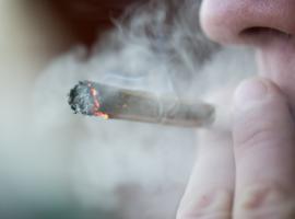 Les dentistes mettent en garde contre les méfaits du cannabis
