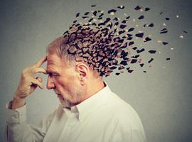 Vlaanderen start eerstelijnshulp voor ouderen met psychische klachten
