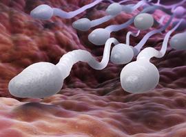 Onderzoek op Belgische reizigers geeft inzicht in zikavirus