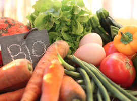 Invloed van biologisch voedsel op het kankerrisico