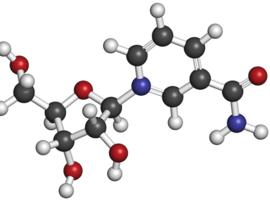 Le nicotinamide riboside, dérivé de la vitamine B3, stimulerait la production de cellules sanguines