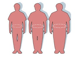 Propionaat draagt bij tot gewichtstoename