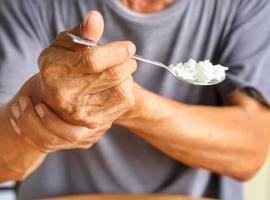 Un modèle réduit de mésencéphale pour comprendre la maladie de Parkinson