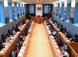 Ook Waals parlement krijgt bijzondere commissie
