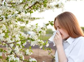 Geen reden om te stoppen met intranasale corticosteroïden bij allergische rinitis en een Covid-19-infectie