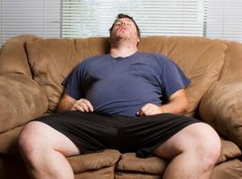 Obesitas en slaap…Over de rol van het endocannabinoïdensysteem