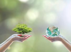 Lancement en Belgique du 1er réseau d'analyse d'impact sur l'environnement et la santé
