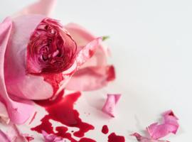 Mutilations génitales: la Chambre vote une loi sur le secret professionnel médical