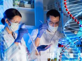 Onderzoekers van KU Leuven ontdekken 15 nieuwe genen die onze gelaatstrekken bepalen