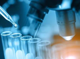 Journées découvertes de la chimie et des sciences de la vie les 18 et 19 mai