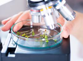 Laboratoriumonderzoeken en biologische geneesmiddelen: richtlijnen versus klinische relevantie