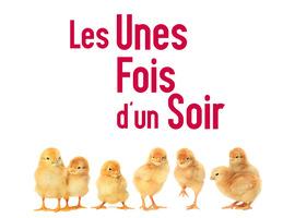 Les Unes fois d'un Soir, spectacles artistiques belges et internationaux gratuits à Huy