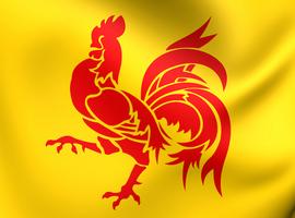 La Wallonie prendra ses mesures si le comité de concertation ne va pas assez loin
