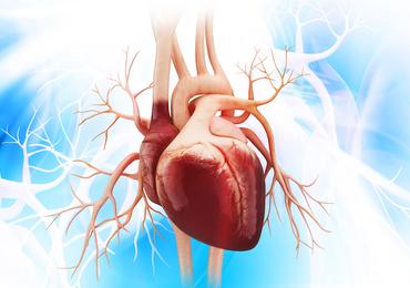 Réhospitalisations après remplacement de la valve aortique par chirurgie ou par voie percutanée