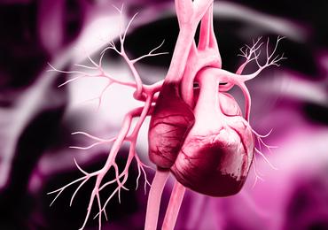 En cas d'infarctus, une femme a davantage de chances de survie avec un médecin femme