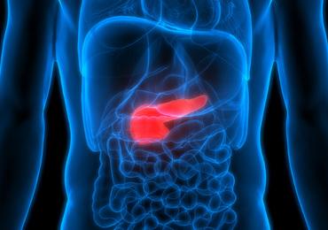 Des chercheurs belges identifient cinq sous-types de cancer du pancréas