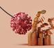 Gezondheidseconomische aspecten van de covid-19-epidemie