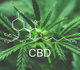 Les pharmaciens peuvent désormais vendre le composant du cannabis CBD