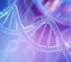 Une étude fleuve lève un coin du voile sur les secrets génétiques du cancer