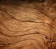 Onderzoekers vervangen fossiele grondstoffen in kankermedicijnen door hout
